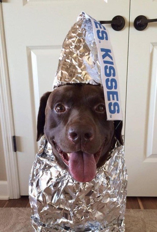 the best kind of chocolate kiss