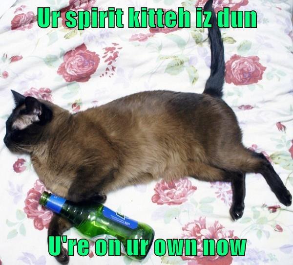 Ur spirit kitteh iz dun  U're on ur own now