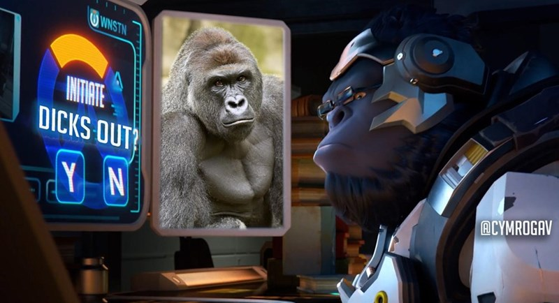 winston-wont-forget-harambe-overwatch-moment