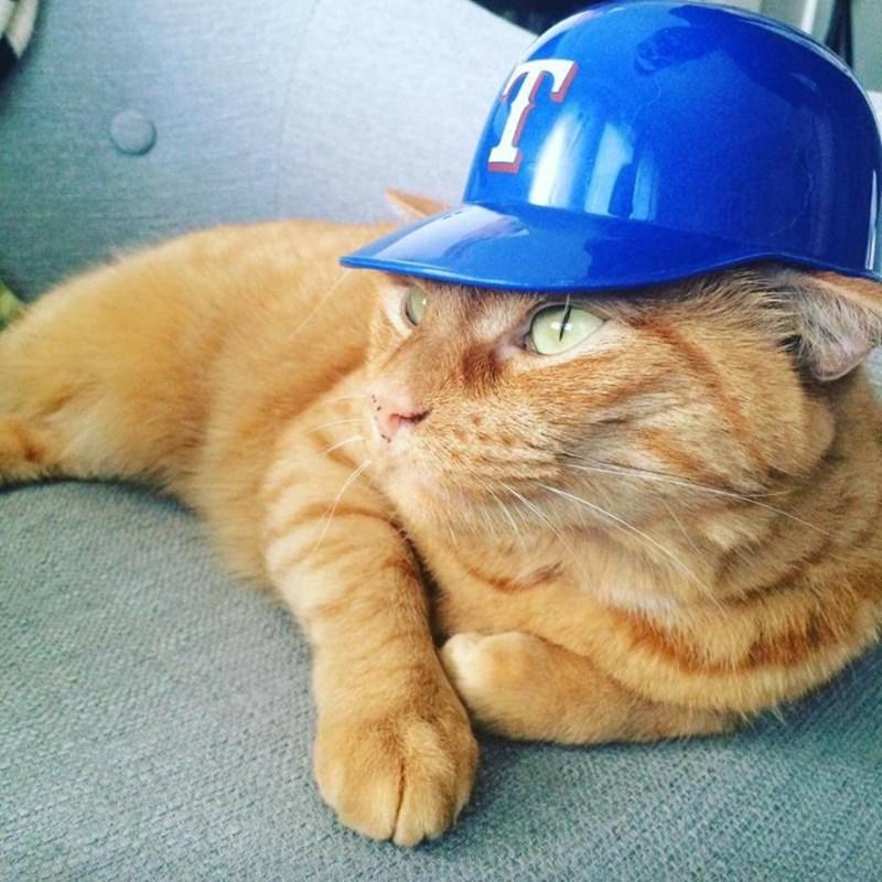 cas baseball hat - 8966570752