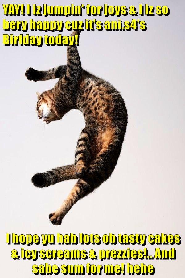 YAY! I iz jumpin' for joys & I iz so bery happy cuz it's ani.s4's Birfday today!  I hope yu hab lots ob tasty cakes & icy screams & prezzies!.. And sabe sum for me! hehe