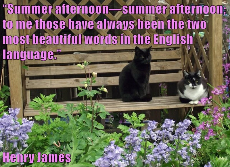 """Summer afternoon—summer afternoon; to me those have always been the two most beautiful words in the English language.""  Henry James"
