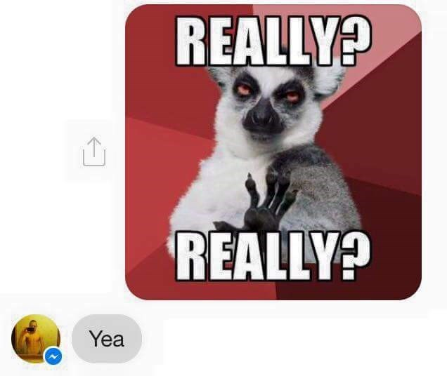Lemur - REALLY? REALLY? Yea