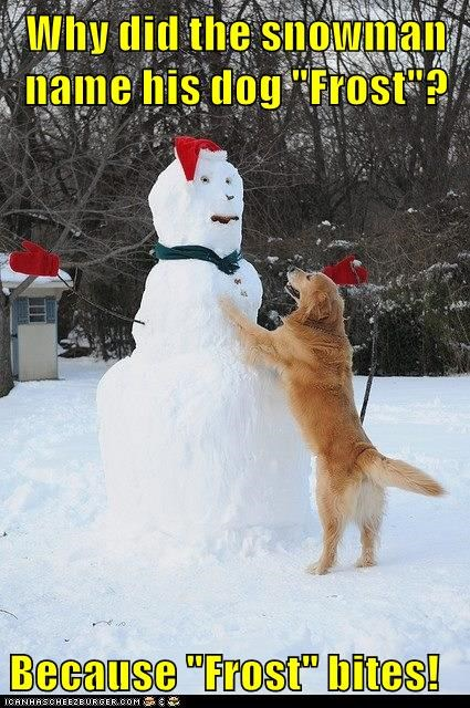 "Why did the snowman name his dog ""Frost""?  Because ""Frost"" bites!"
