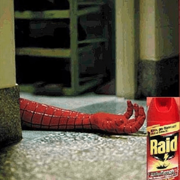 Image result for Raid Spiderman Advert