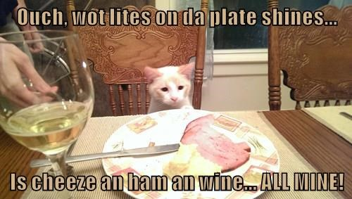 animals ham cat lights plate cheeze shines wine caption - 8967028992