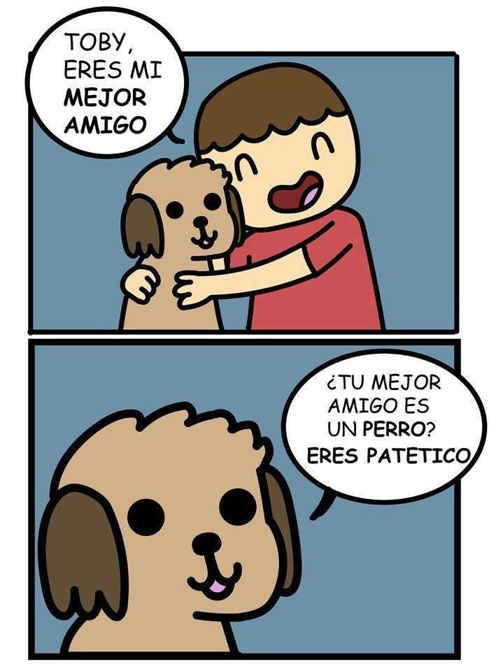 amigo