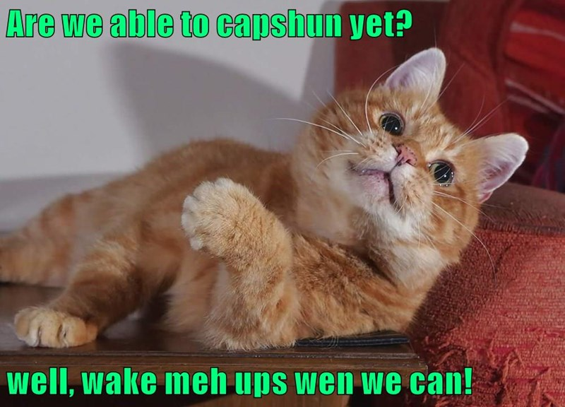 Are we able to capshun yet?  well, wake meh ups wen we can!