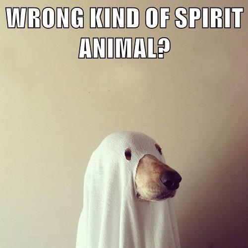 WRONG KIND OF SPIRIT ANIMAL?