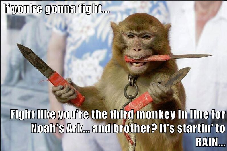 If you're gonna fight...  Fight like you're the third monkey in line for Noah's Ark... and brother? It's startin' to RAIN...
