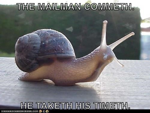 Funny meme of a snail that is very slow, just like the mailman.
