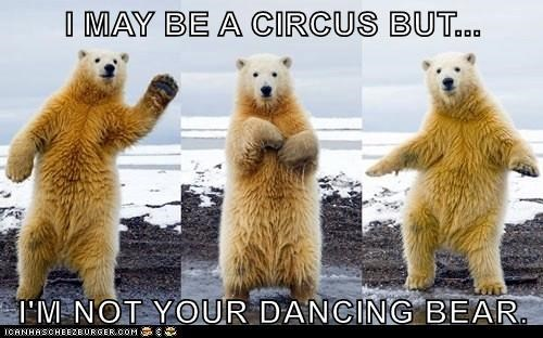 Funny pictures of a dancing bear made into a funny series about him not being a circus.