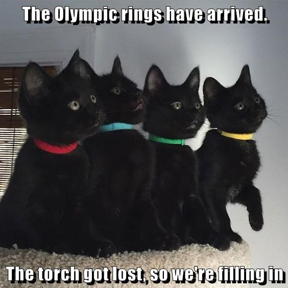 The Olympic rings have arrived