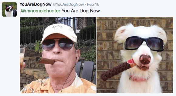 Eyewear - YouAreDogNow @YouAreDogNow Feb 16 .@rhinomolehunter You Are Dog Now