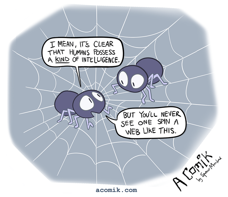 image spiders intelligence Of Course Spiders Think They're Better Than Us