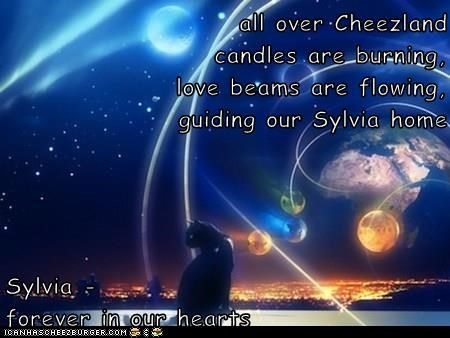 all over Cheezland                                                       candles are burning,                                                                                                       love beams are flowing,