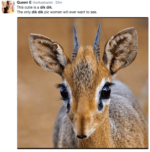 Mammal - Queen E @erikaskarlet 33m This cutie is a dik dik. The only dik dik pic women will ever want to see