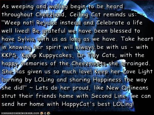 """As weeping and wailing begin to be heard throughout Cheezland, Ceiling Cat reminds us: ~ """"Weep not! Rejoice instead and Celebrate a life well lived! Be grateful we have been blessed to have Sylvia with us as long as we have. Take heart in knowing her spir"""