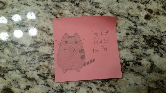 Pink - ve Got Felines For You