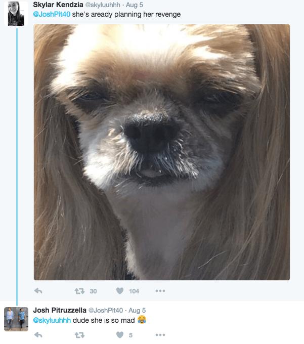 Dog - Skylar Kendzia @skyluuhhh Aug 5 @JoshPit40 she's aready planning her revenge t30 104 Josh Pitruzzella @JoshPit40 Aug 5 @skyluuhhh dude she is so mad