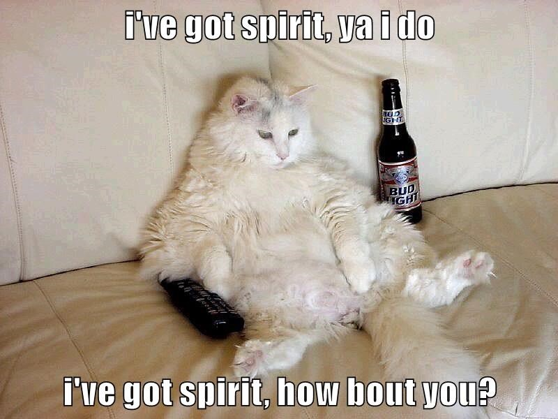 i've got spirit, ya i do  i've got spirit, how bout you?