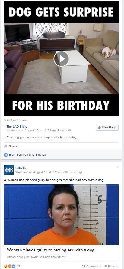 dogs failbook facebook - 8968345600