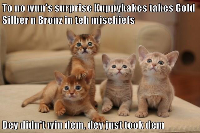 To no wun's surprise Kuppykakes takes Gold Silber n Bronz in teh mischiefs  Dey didn't win dem, dey just took dem