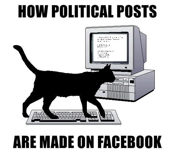 facebook politics cat memes - 8968463104