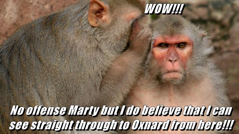 WOW!!!  No offense Marty but I do believe that I can see straight through to Oxnard from here!!!