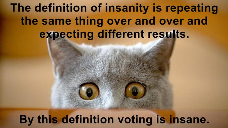 The definition of insanity is repeating the same thing over and over and expecting different results.   By this definition voting is insane.
