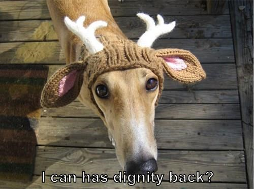 I can has dignity back?
