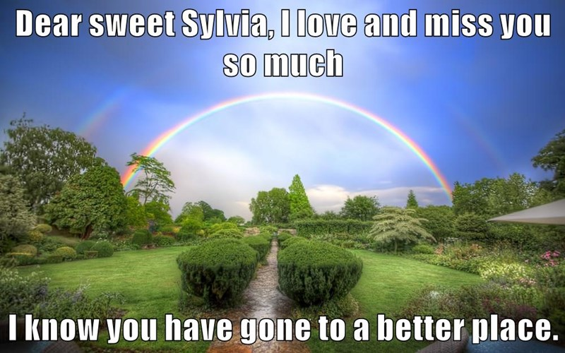 Dear sweet Sylvia, I love and miss you so much  I know you have gone to a better place.