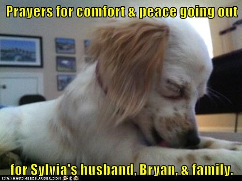 Prayers for comfort & peace going out  for Sylvia's husband, Bryan, & family.
