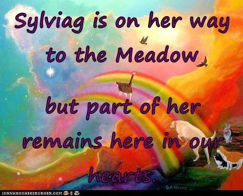 Sylviag is on her way to the Meadow  but part of her remains here in our hearts.