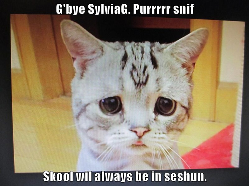 G'bye SylviaG. Purrrrr snif  Skool wil always be in seshun.