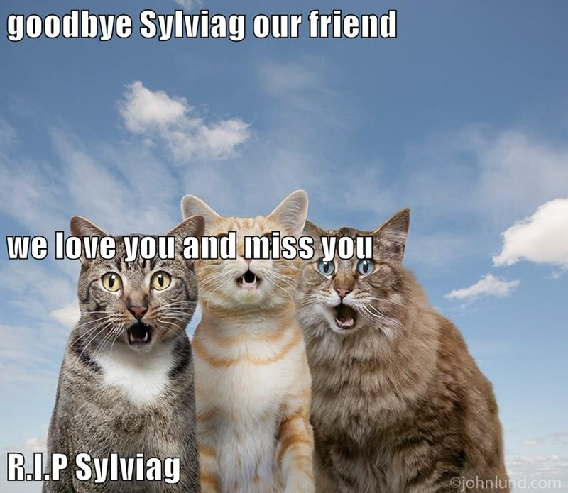 goodbye Sylviag our friend we love you and miss you R.I.P Sylviag