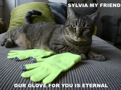SYLVIA MY FRIEND  OUR GLOVE FOR YOU IS ETERNAL