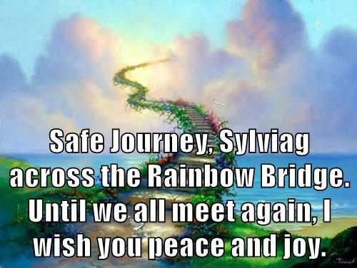 Safe Journey, Sylviag across the Rainbow Bridge.  Until we all meet again, I wish you peace and joy.
