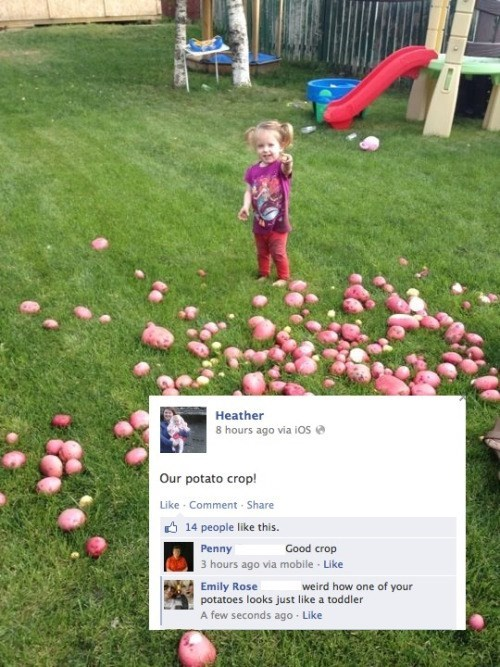 toddler kids failbook facebook - 8968795648