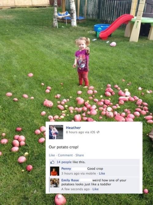 toddler kids failbook facebook
