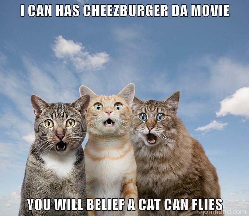 Cheezburger Image 8968928256