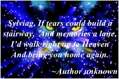 Sylviag, If tears could build a stairway,  And memories a lane,  I'd walk right up to Heaven  And bring you home again.             ~Author unknown
