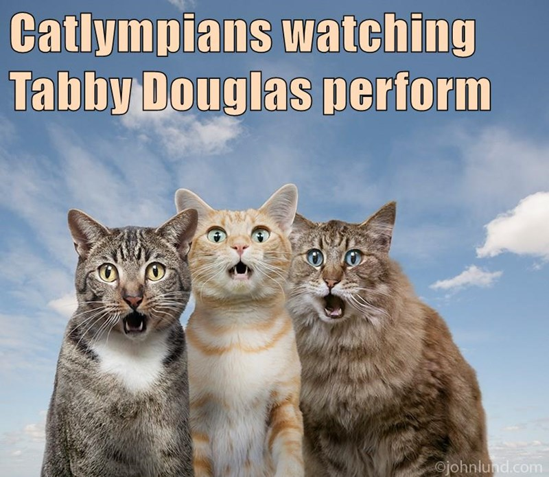 Catlympians watching Tabby Douglas perform