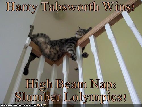 Harry Tabsworth Wins!  High Beam Nap:    Slumber Lolympics!