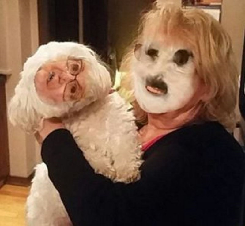 dogs,FAIL,face swap