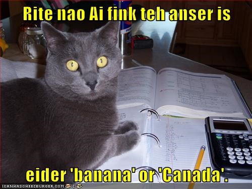 Rite nao Ai fink teh anser is   eider 'banana' or 'Canada'.
