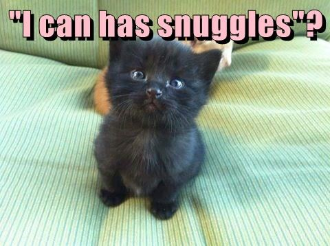 """I can has snuggles""?"