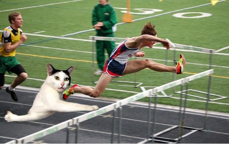 photoshop battle - Sports