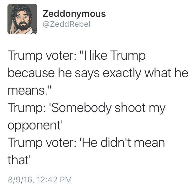 donald trump politics - 8969486848