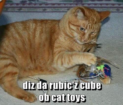 diz da rubic'z cube                                         ob cat toys